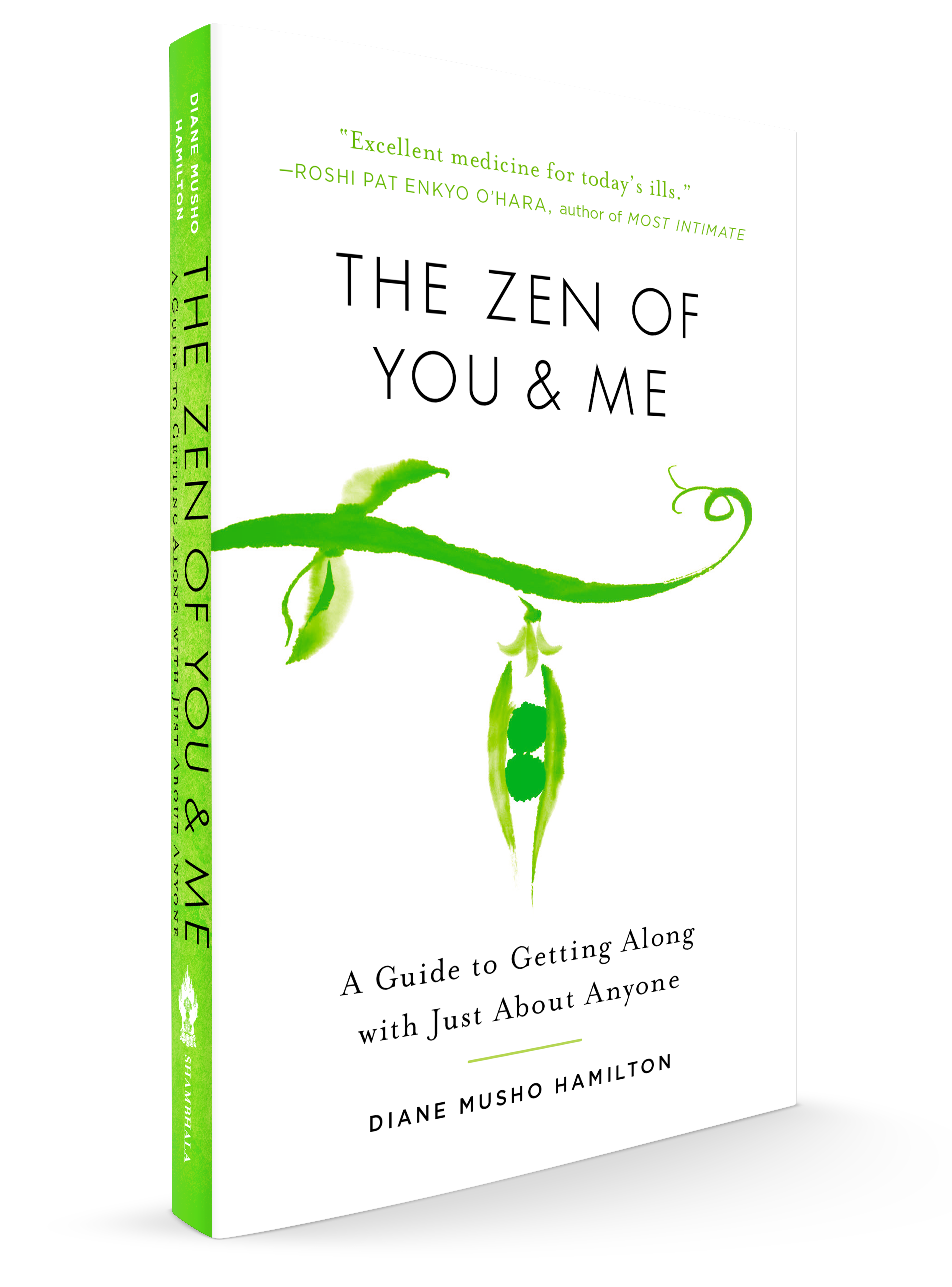 Zen of You and Me transparent